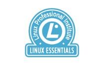 Imagen de la categoría Linux Essentials